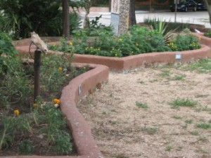 Raised border made from concrete blocks