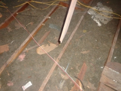debris on insulation