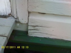 moisture in exterior cladding