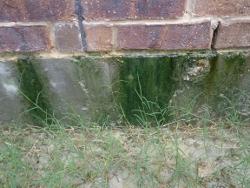 wall plumbing leak