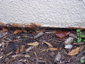 stucco rust