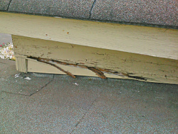 moisture damage wall to roof joint